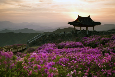 Picturesque Countryside, Taiwan Vacation